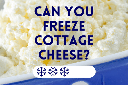 Can You Freeze Cottage Cheese?