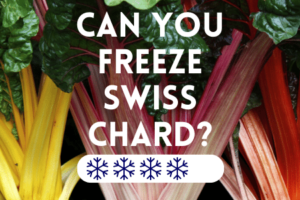 Can You Freeze Swiss Chard?