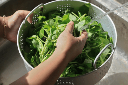 Can you freeze fresh spinach